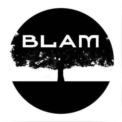 blam pic